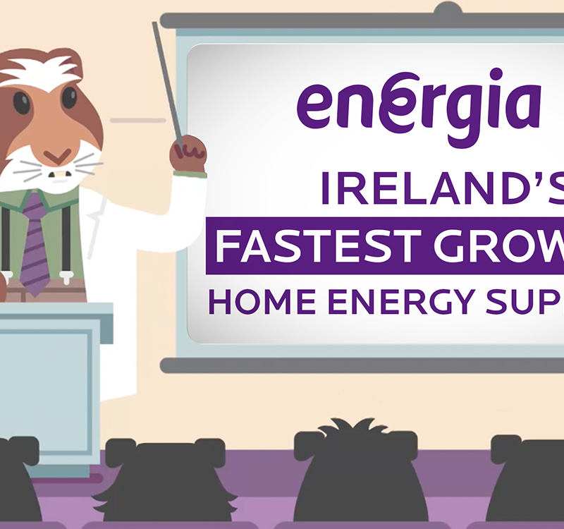 Fastest growing energy suppliers Energia